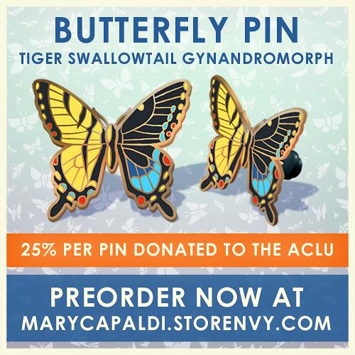 Tiger Swallowtail Gynandromorph Pin Preorder!
