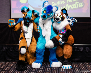 FurDU 2018: Blue Moon, Theta Beta and Riot