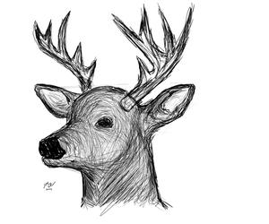 Deer thing
