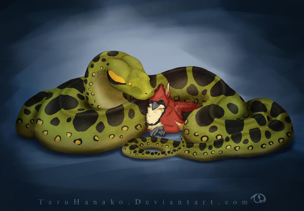 Snake cuddles