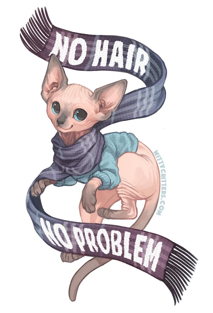 No Hair No Problem