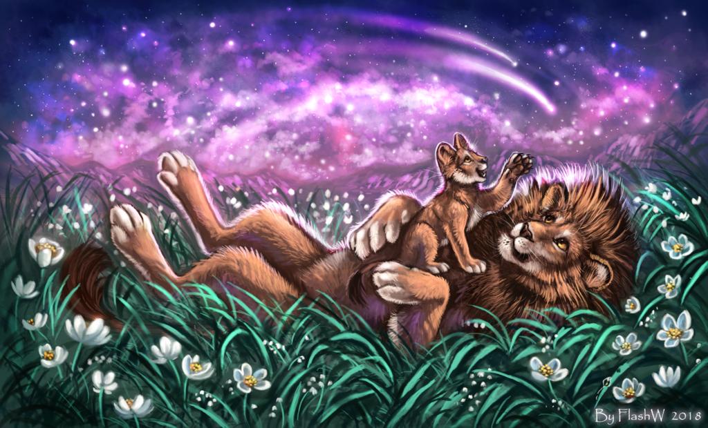 Stars in night