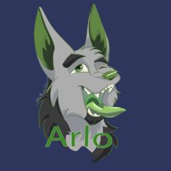 Arlo Profile Picture