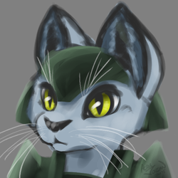 Armored Kitty