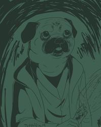 1.12.14 Jedi Pug