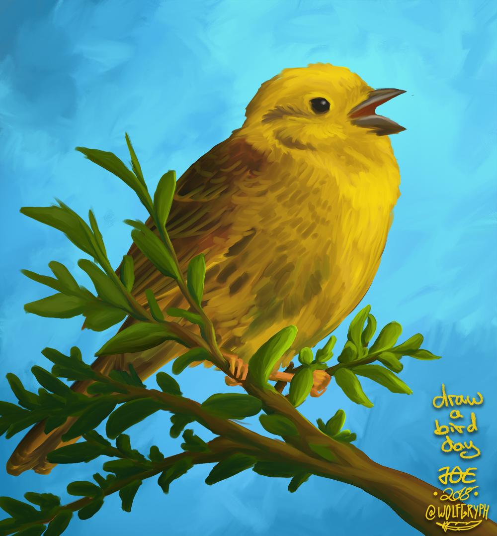 draw a bird day - yellowhammer — Weasyl