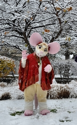 Snow Mouse