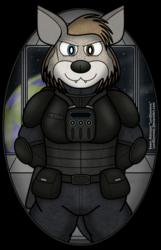 Commander Rolfe