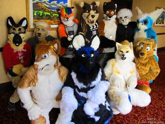 Furry Fiesta 3 2011 - BIG Group Photo!