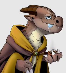 Leef, The Archfey Warlock
