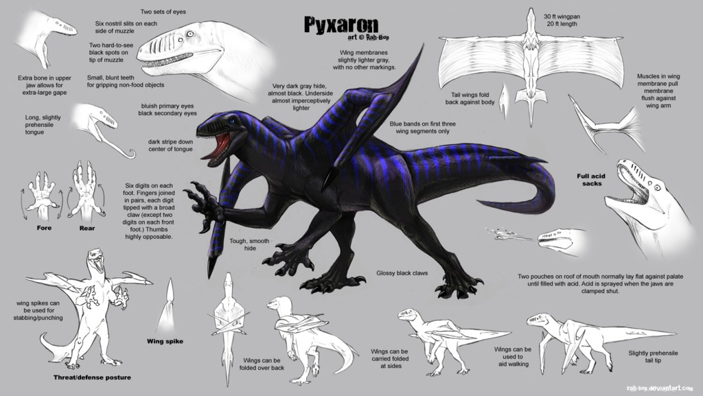 Pyxaron Reference Sheet by Rah-Bop