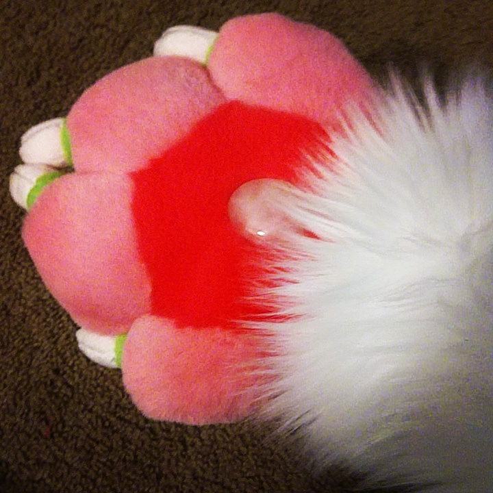 Saber paws almost done!