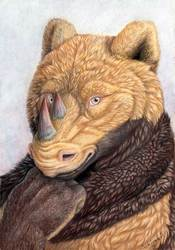 Uillian portrait