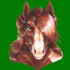 avatar of EgoEquus