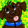 avatar of DJLab