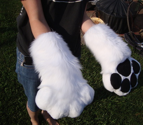 Puffy Paws