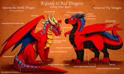 A Guide To Red Dragons