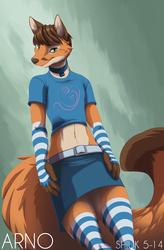 Typical Femboy Foxy