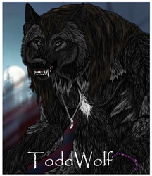 ToddWolf badge