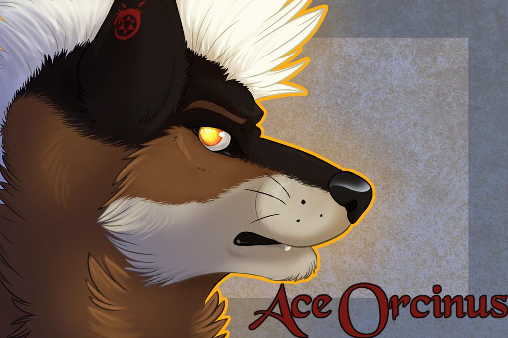 AceOrcinus Badge