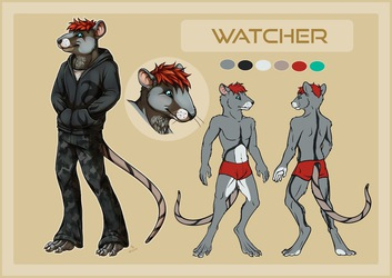 [c] Watcher Rat Ref Sheet by Schneeauge