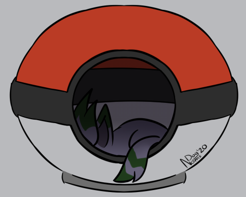 [P] Sleepy Zoroark