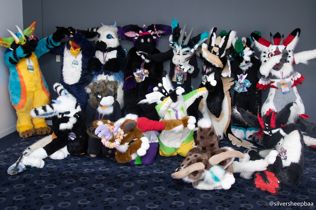 FurDU 2019: DAB Dragons