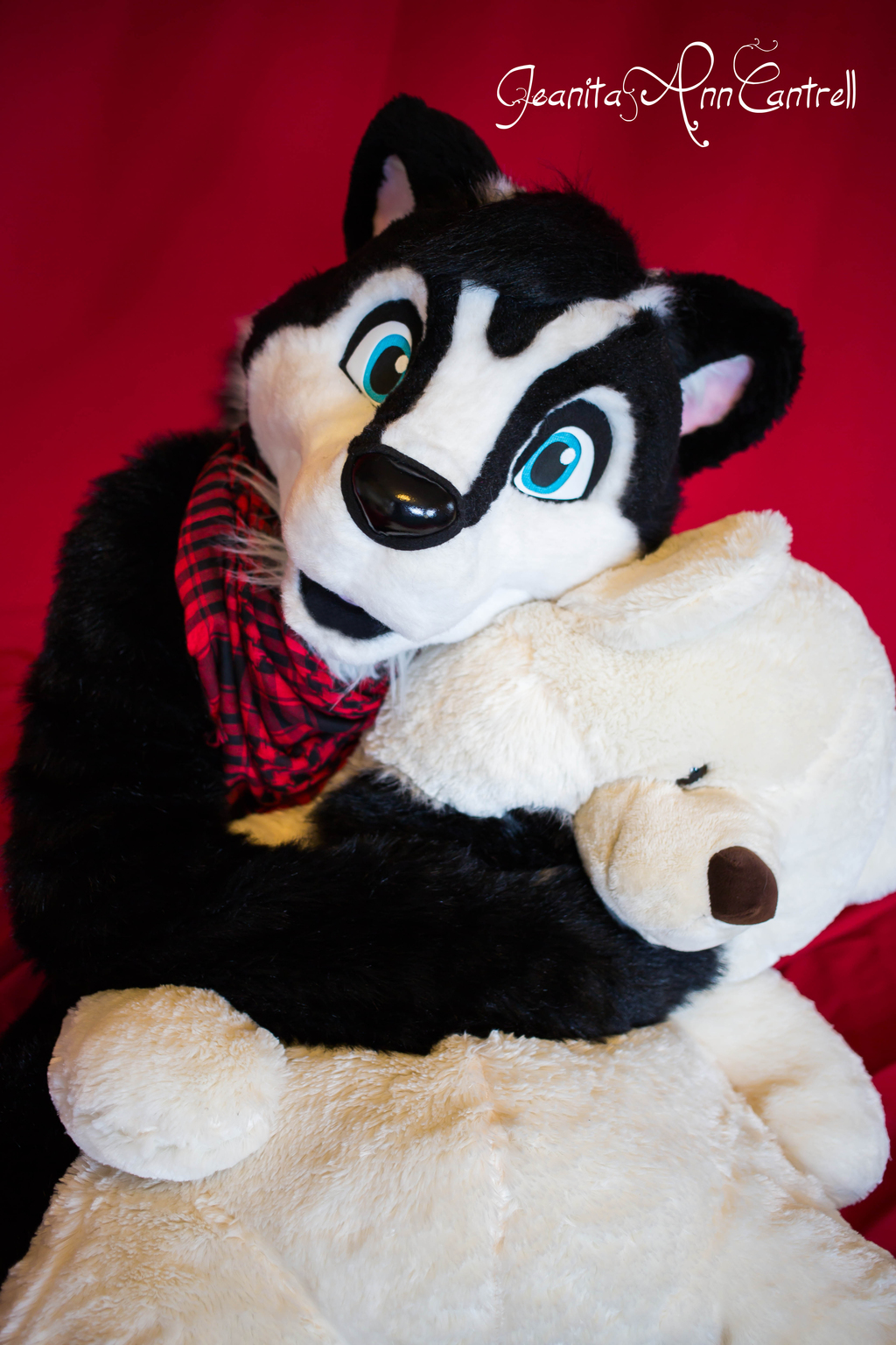 Most recent image: But I Love My Teddy!