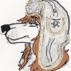 avatar of Raccooncoat