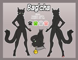 Bagcha ref sheet Commission