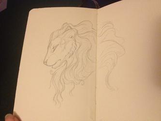 Lion -sketch-