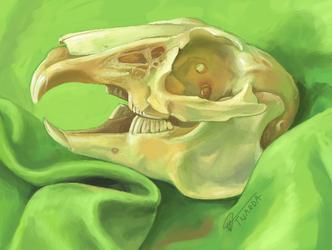 Plain Green Skull [3DS]