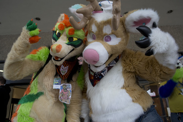 Groove & Thick @ Furpoc 2014