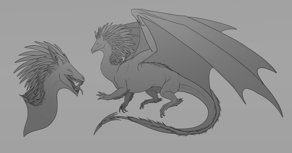 Feathered Crest Dragon Sketch