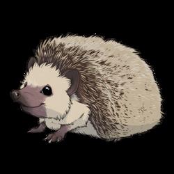 Hedgehog Sticker 1