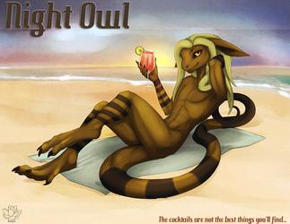 Night Owl: Gekko