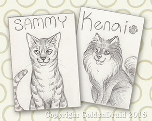 Pet Sketch Card Commissions