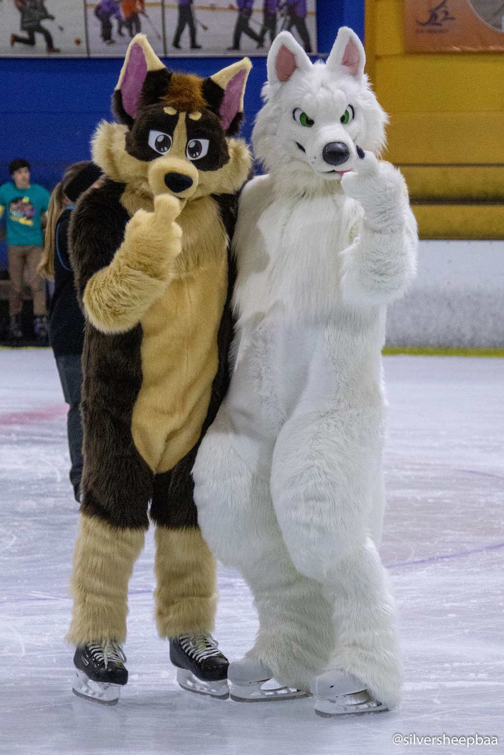 Furries On Ice: Diego and Trak