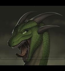 [Commission] Dragon
