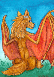 Amber Wind ACEO