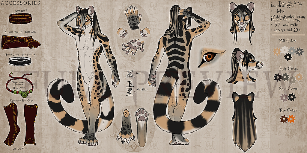 """""""Syng"""" Feng Yu Xing character reference sheet (by darkicewolf)"""