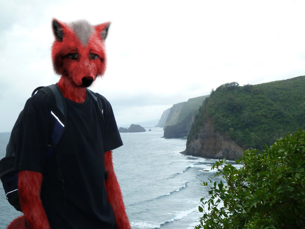 Most recent image: Me as a furry