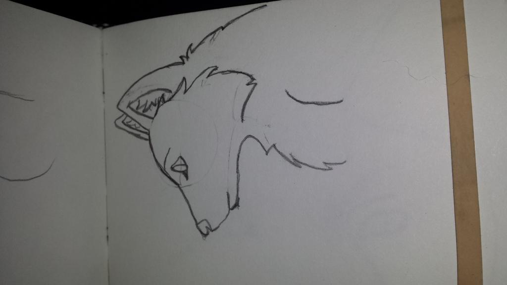Wolf Profile Sketch