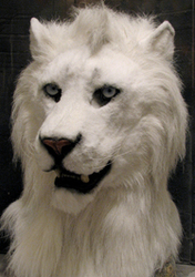 white lion head commission