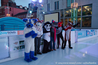 Furries On Ice