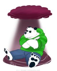COMMISSION: Grumpy Panda