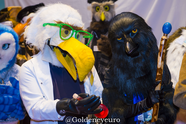 National Bird Day Fursuit Friday