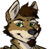 avatar of Dereck Dingo