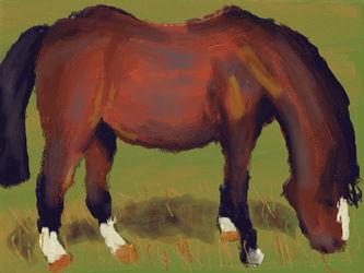 Art Academy: Horse