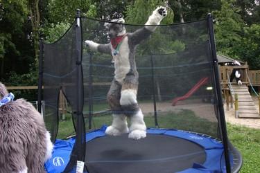 Flecky in Jumping Mode